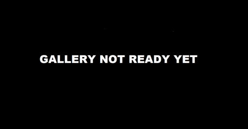 Gallry-Not-ready-yet