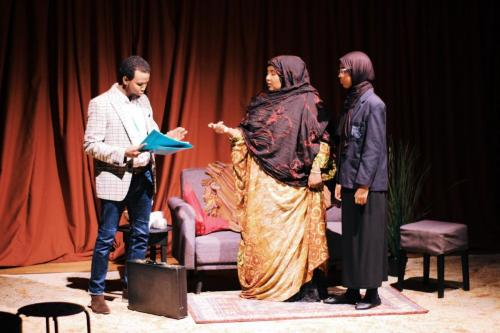 """""""Judging Without Knowing"""" A play and panel discussion on FGM"""